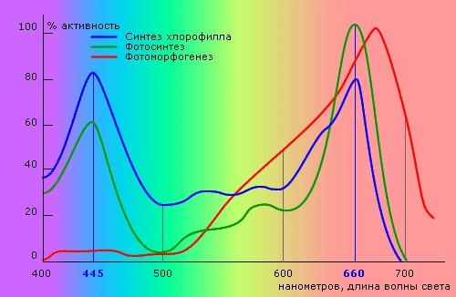 Эффективная длина волн для освещения растений