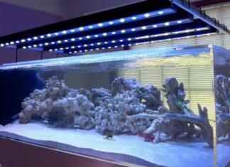 Освещение аквариума светодиодными лентами