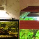 Освещение аквариума прожекторами