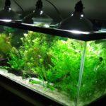 Освещение аквариума прожекторами. Второй вариант